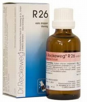 Dr Reckeweg R26 Drops 50 ml