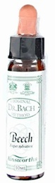 Ainsworth Beech Bach Flower Remedy 10ml